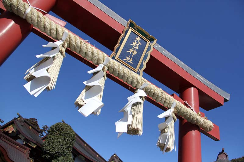 大杉神社はパワースポット。春のような暖かい天気に恵まれ正五九詣りに行ってきました。